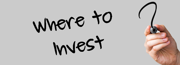 INVESTMENTS AND BUSINESS OPPORTUNITIES WANTED